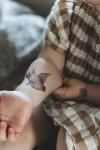 Tatuering_gnuggis_barn_fågel_Mrs_Mighetto